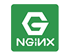Nginx web server logo